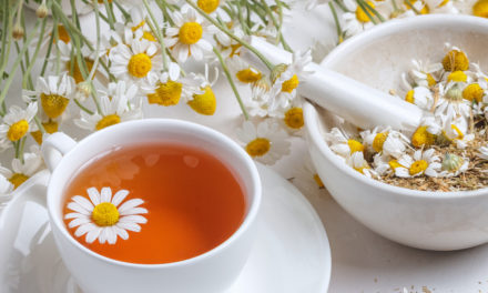 Chamomile Tea: What is it and How Can it Benefit Your Health?