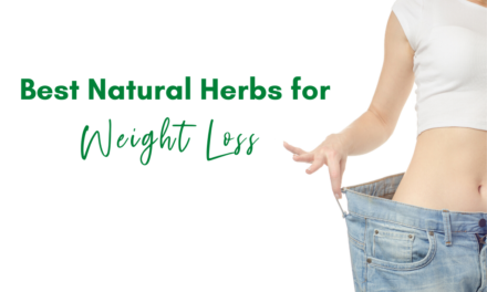 Best Natural Herbs for Weight Loss