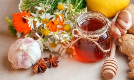 Common Herbal Remedies for Common Types of Illnesses